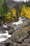 Rapids of Icicle Creek. Stock Photography