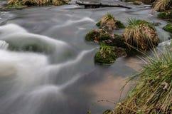 Rapids on Jizera Royalty Free Stock Images