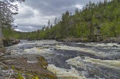 Rapids on Kutsayoki river, Murmansk region, Russia. Stock Photos