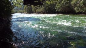 Rapids of mountain river show power water in Patagonia Argentina. Unique landscape of wildlife. Beautiful nature background. Travel and tourism in picturesque stock video
