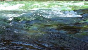 Rapids of mountain river show power water in Patagonia Argentina. stock footage