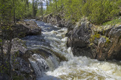 Rapids  on  the mountain river. Royalty Free Stock Photos