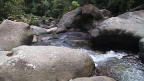 Rapids of Rio Hornito. River in Panama stock footage