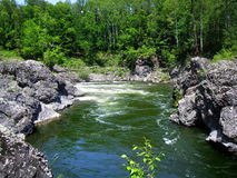 Rapids on river. Rapids on a river going through a forest Royalty Free Stock Image