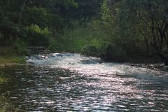 RAPIDS IN THE RIVER AT POPA FALLS. Image of fast flowing white rapids in a river with green vegetation on the bank stock photo