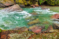 Rapids and Rocks. Colorful rocks can be seen under the rapids in a river in Glacier National Park, Montana Stock Photos