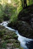 Rapids rocosos Imagen de archivo libre de regalías