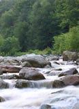 Rapids rojos de la cala Imagenes de archivo