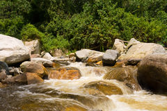 Rapids in ruwenzori mountains Royalty Free Stock Images