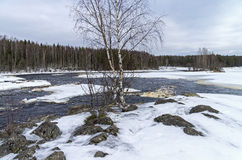 Rapids on Shuya river in winter. Karelia, Russia. Stock Photo