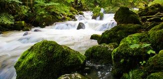 Rapids suíços do rio Fotos de Stock