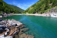 Rapids a testa piatta del fiume - Montana fotografia stock
