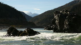 Rapids on the Thompson River, BC. River rapids on the Thompson River before it joins with the Fraser River stock video