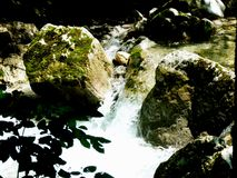 Rapids in the wild brook with boulders in the water 3. Wet stones in the brook with moss Vegetation, idyllic rushing brook with stone blocks, relaxation at the royalty free stock photography