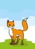 raposa Foto de Stock