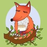 raposa Imagens de Stock