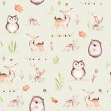 A raposa bonito do bebê, o coelho do berçário dos cervos e o urso animais isolaram o teste padrão da ilustração Desenho da flores ilustração stock