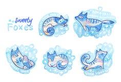 Raposas do Sweety em floral Remendos ou coleção bonita dos pinos Fotografia de Stock Royalty Free