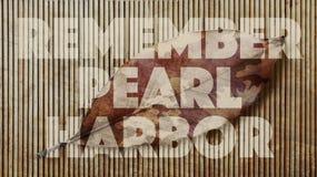 Rappelez-vous Pearl Harbor camouflage Image libre de droits