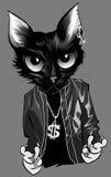Rapper del gattino Immagini Stock Libere da Diritti