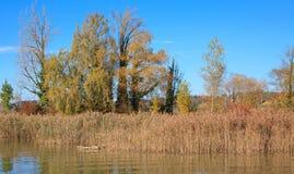 Rapperswil, lago Obersee, otoño Fotografía de archivo libre de regalías