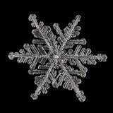 Un vrai macro de flocon de neige se trouve entre d 39 autres - Vrai flocon de neige ...