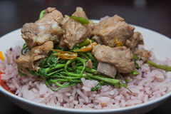 Rapporteur fried rice and pork ribs. Royalty Free Stock Image