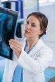 Rapporto d'esame dei raggi x di medico femminile Fotografia Stock Libera da Diritti