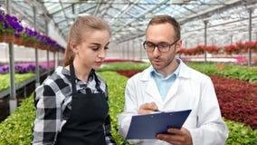 Rappresentazione agricola maschio della cartella della tenuta dell'ingegnere che analizza all'agricoltore professionista femminil stock footage