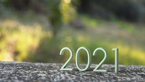 rappresentazione 2021 3d illustrazione vettoriale