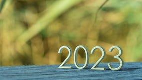 rappresentazione 2023 3d illustrazione vettoriale