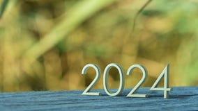 rappresentazione 2024 3d illustrazione vettoriale