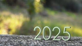 rappresentazione 2025 3d illustrazione di stock