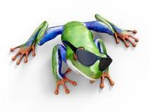 rappresentazione 3D di un sunglasse d'uso con gli occhi rossi realistico della rana di albero Fotografia Stock Libera da Diritti