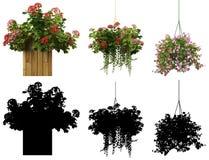 rappresentazione 3d di una collezione realistica del vaso di fiore isolata su wh Fotografia Stock