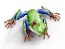 rappresentazione 3D di una rana di albero con gli occhi rossi realistica Fotografie Stock