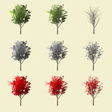 Rappresentazione dell'albero 3d di Aspen isolata per il progettista del paesaggio Immagine Stock