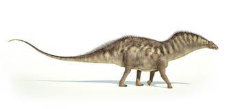 Rappresentazione fotorealistica di un dinosauro del Amargasaurus. Lato Immagini Stock Libere da Diritti