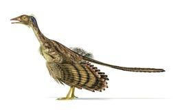 Rappresentazione fotorealistica di un dinosauro dell'archaeopteryx. Immagine Stock