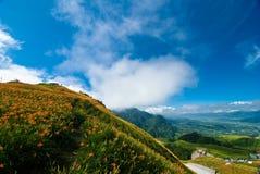 Rapsblumenfeld mit schönem cloudscape Stockfoto