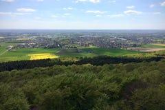 Rapssamenfeld über Waldland lizenzfreies stockfoto