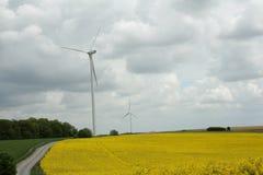 Rapssamenfeld und -windmühle in Frankreich Lizenzfreie Stockbilder