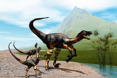 Raptors. Mother Raptor dinosaur with her two young babies Stock Images