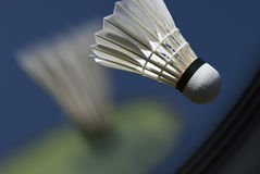 Raquete do Badminton Action Imagem de Stock Royalty Free