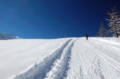 Raquete do inverno que trekking Fotografia de Stock