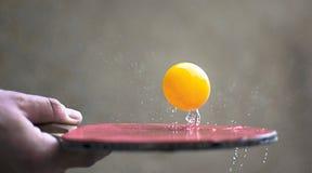 Raquete do pong do sibilo que bate uma bola Conceito da ação do movimento do esporte do tênis de mesa imagens de stock royalty free