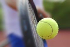 Raquete e esfera de tênis Imagem de Stock