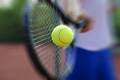 Raquete e esfera de tênis foto de stock