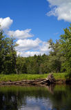 Raquette Fluss Stockfoto