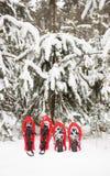 Raquettes dans la forêt Images libres de droits
